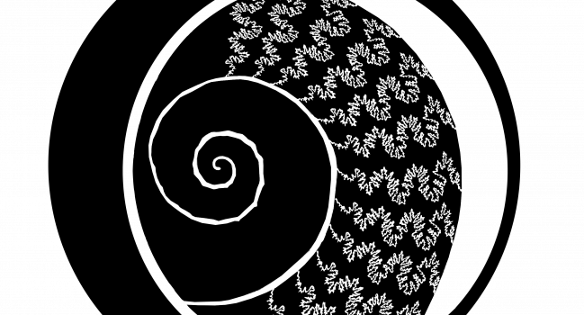 Orden Ammonitida-app