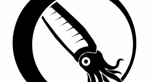 Orden Orthocerida-app